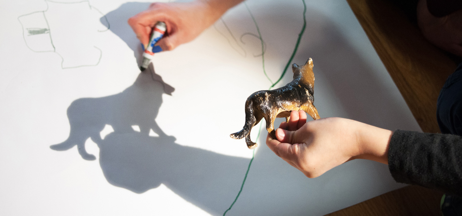 Tracing the shadow cast by a toy figure of a dog.